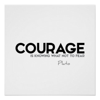 ZITATE: Plato: Mut Poster