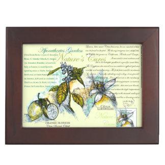 Zitrone Blossons Teebeutel-Kasten, 1 Erinnerungsdose