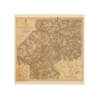 Zivile Kriegs-Karte Atlanta Georgia am 19. Juli - Holzleinwände