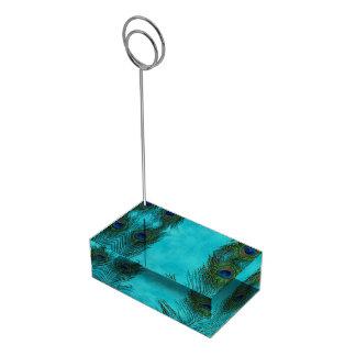 Zwei Aqua-Pfau-Federn