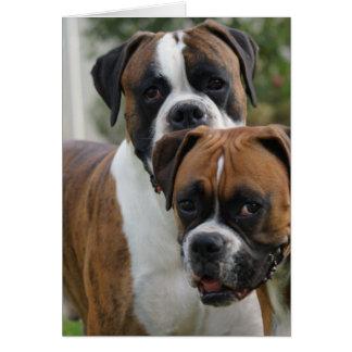 Zwei Boxer-Hunde Karte