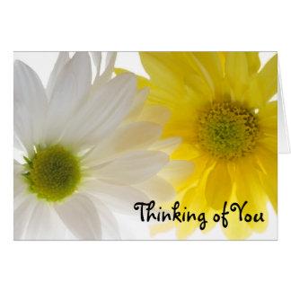Zwei Gänseblümchen, die an Sie denken, kardieren Grußkarte