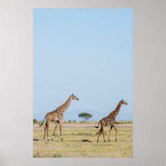 Zwei Giraffen-Gehen Poster