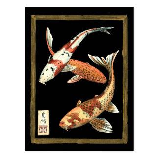 Zwei Japaner Koi Goldfisch auf schwarzem Postkarten
