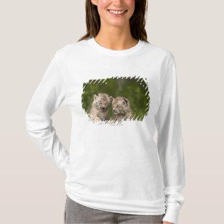 Zwei Kanada-Luchs-Kätzchen, die auf einem Klotz T-Shirt