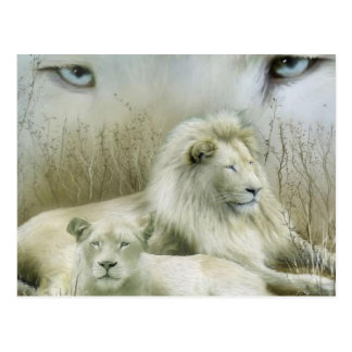 Zwei Löwen am Erholungskunstentwurf Postkarte