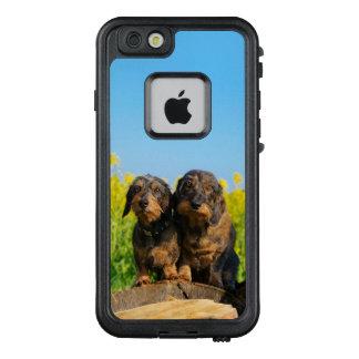 Zwei niedliches Dackel-Hundeporträt-Foto LifeProof FRÄ' iPhone 6/6s Hülle