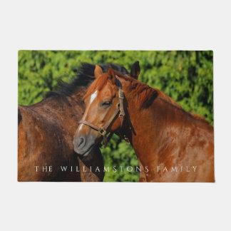 Zwei schöne Kastanien-Pferde im Sun Türmatte